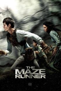 Maze Runner: Correr ou Morrer - Poster / Capa / Cartaz - Oficial 6