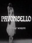 Pavoncello - Poster / Capa / Cartaz - Oficial 1