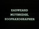 Eadweard Muybridge, Zoopraxographer (Eadweard Muybridge, Zoopraxographer)