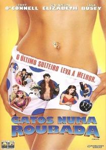 Gatos Numa Roubada - Poster / Capa / Cartaz - Oficial 4