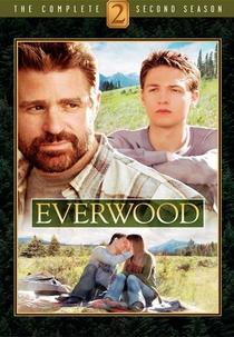 Everwood: Uma Segunda Chance (2ª Temporada) - Poster / Capa / Cartaz - Oficial 1