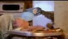Baby comilao familia dinossauro