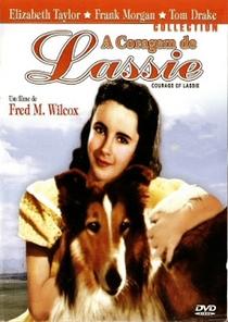 A Coragem de Lassie - Poster / Capa / Cartaz - Oficial 4