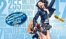 American Idol (14ª Temporada) - Poster / Capa / Cartaz - Oficial 2
