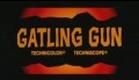 Quel caldo maledetto giorno di fuoco aka Machine Gun Killers aka Gatling Gun