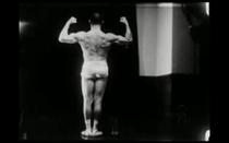 Os Musculos Superficiais do Homem - Poster / Capa / Cartaz - Oficial 1