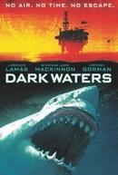 Águas Escuras (Dark Waters)