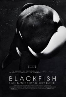 Blackfish - Fúria Animal - Poster / Capa / Cartaz - Oficial 1
