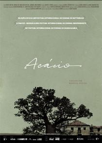 Acácio - Poster / Capa / Cartaz - Oficial 1