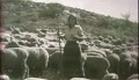 1929 Thundering Thompson (Cheyenne Bill / Neva Gerber)