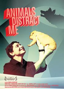 Os Animais me Distraem - Poster / Capa / Cartaz - Oficial 1