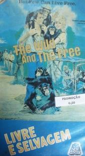 Livre e Selvagem - Poster / Capa / Cartaz - Oficial 1