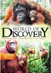 (ABC) Mundo da Descoberta - Poster / Capa / Cartaz - Oficial 8