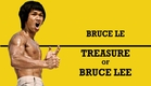 Wu Tang Collection: Treasure Of Bruce Lee