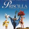 A Liga Gay: Assista o filme Priscilla a rainha do deserto completo