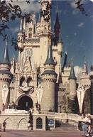 Walt Disney World: A Dream Come True (Walt Disney World: A Dream Come True)