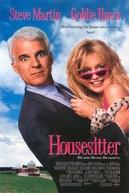 Como Agarrar um Marido (Housesitter)