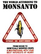 O Mundo Segundo a Monsanto