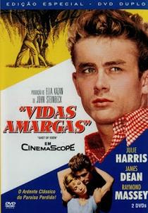 Vidas Amargas - Poster / Capa / Cartaz - Oficial 7