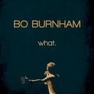 Bo Burnham: What (Bo Burnham: What)