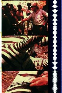 Unsere Afrikareise - Poster / Capa / Cartaz - Oficial 1