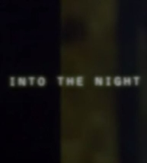 Into the Night - Poster / Capa / Cartaz - Oficial 1