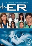 Plantão Médico (14ª Temporada) (ER (Season 14))