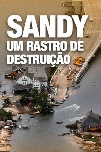 Sandy - Um Rastro de Destruição (National Geographic) - Poster / Capa / Cartaz - Oficial 2
