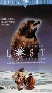 Perdidos no Deserto de Neve - Poster / Capa / Cartaz - Oficial 1