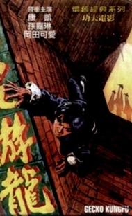 Gecko Kung Fu - Poster / Capa / Cartaz - Oficial 1