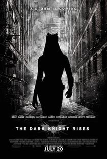 Batman - O Cavaleiro das Trevas Ressurge - Poster / Capa / Cartaz - Oficial 20
