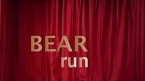 Bear Run - Poster / Capa / Cartaz - Oficial 1