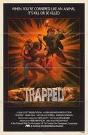 Os Falsarios (Trapped)