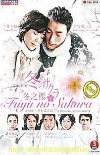 Fuyu no Sakura - Poster / Capa / Cartaz - Oficial 2