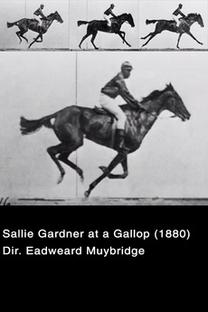 Sallie Gardner at a Gallop - Poster / Capa / Cartaz - Oficial 1