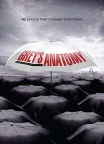 A Anatomia de Grey (6ª Temporada) - Poster / Capa / Cartaz - Oficial 2