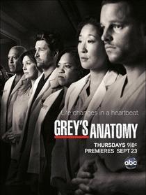 Grey's Anatomy (8ª Temporada) - Poster / Capa / Cartaz - Oficial 4