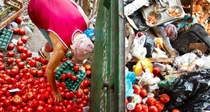 Desperdício de alimentos - quem paga essa conta? - Poster / Capa / Cartaz - Oficial 1