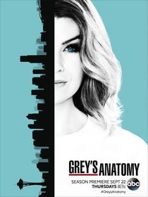 Grey's Anatomy (13ª Temporada) - Poster / Capa / Cartaz - Oficial 1
