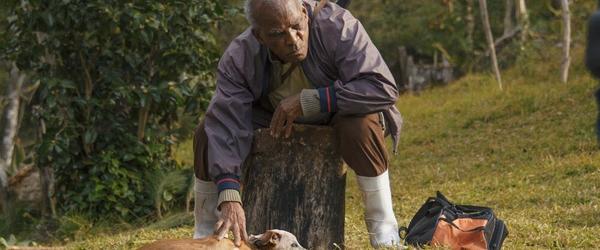 Filme brasileiro Casa de Antiguidades tentará vaga no Oscar 2021