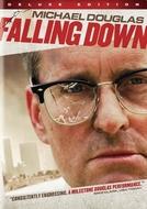 Um Dia de Fúria (Falling Down)