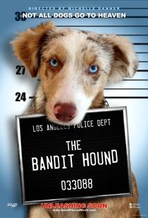 The Bandit Hound - Poster / Capa / Cartaz - Oficial 1