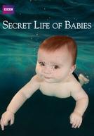 A Vida Secreta dos Bebês