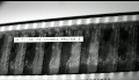 DINO CAZZOLA - trailer 01