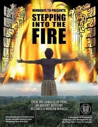 Stepping Into the Fire - Poster / Capa / Cartaz - Oficial 1
