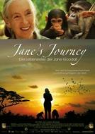 A Jornada De Jane (Jane's Journey)