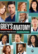 Grey's Anatomy (9ª Temporada) (Grey's Anatomy (Season 9))