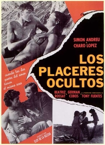 Os Prazeres Ocultos - Poster / Capa / Cartaz - Oficial 3