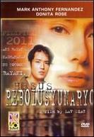 Hesus, Revolucionário
