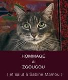 Hommage à Zgougou (et salut à Sabine Mamou)